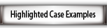 Highlighted Case Examples
